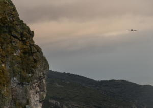 Road Trip Cantabria-20